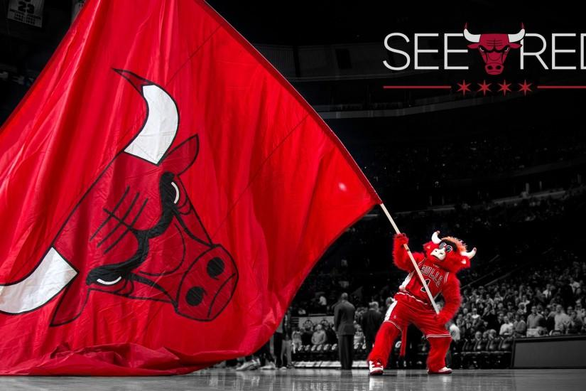 Chicago Bulls | 2014 NBA Playoffs | See Red