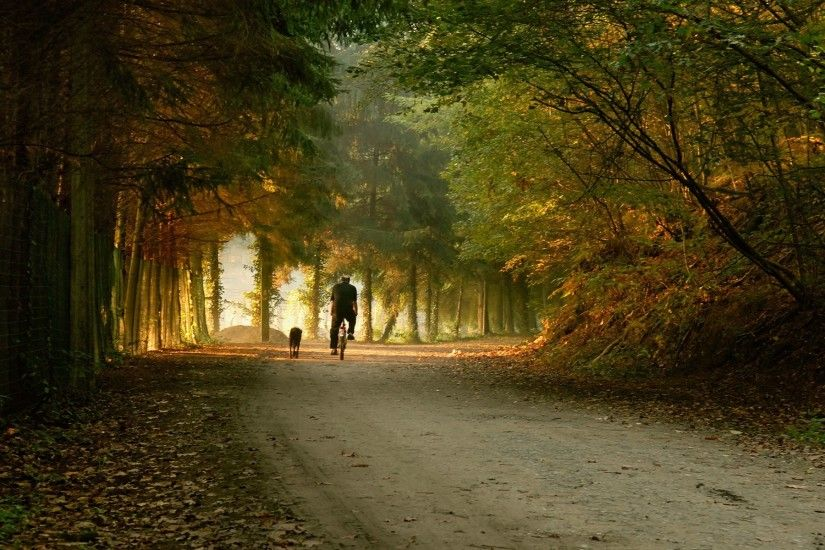 1920x1200 Wallpaper park, road, bike, skate, fall