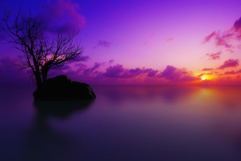 Earth - Scenic Sunset Ocean Pastel Tree Artistic Purple Cloud Rock Wallpaper
