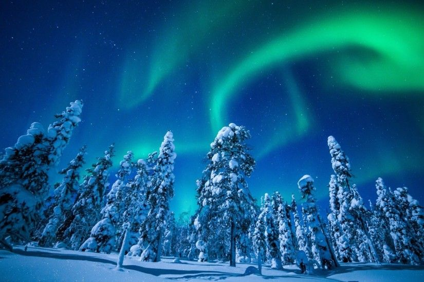 Northern Lights Finland Snow Trees Wallpaper