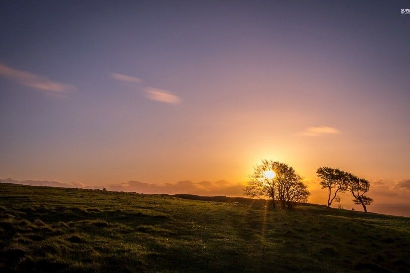 Hill Trees & Beautiful Sunset wallpapers and stock photos