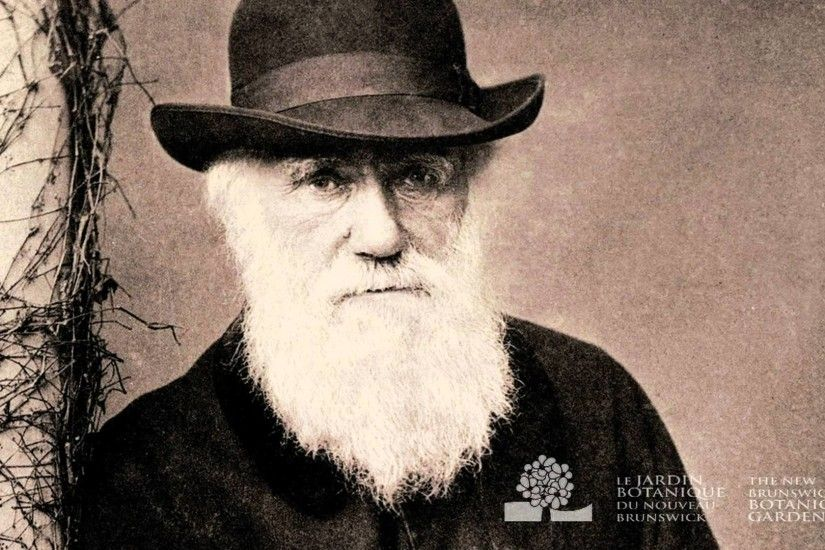 Darwin Day 2016 - YouTube Charles Darwin Evolution Wallpaper ...