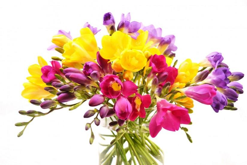 Flowers bouquet vase freesia white background wallpaper | 2048x1365 |  335936 | WallpaperUP