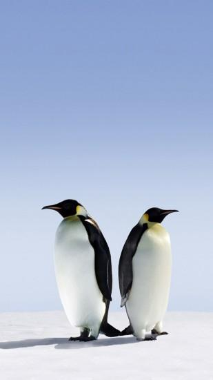 Penguin Galaxy S4 Wallpapers HD