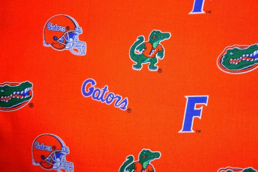 FLORIDA GATORS college football wallpaper | 1920x1440 | 595513 .