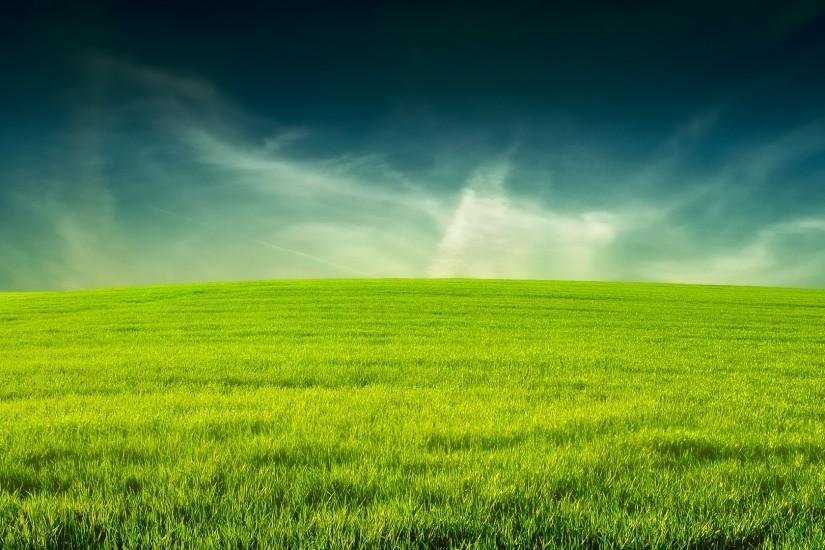 widescreen grass wallpaper 1920x1080 for android