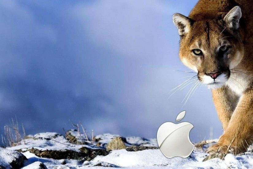 Wallpapers For > Apple Tiger Wallpaper