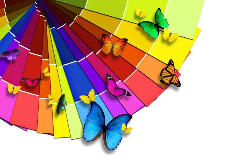 bright and colorful | Bright color palette and the Butterfly Wallpaper |  1920x1200 wallpaper .