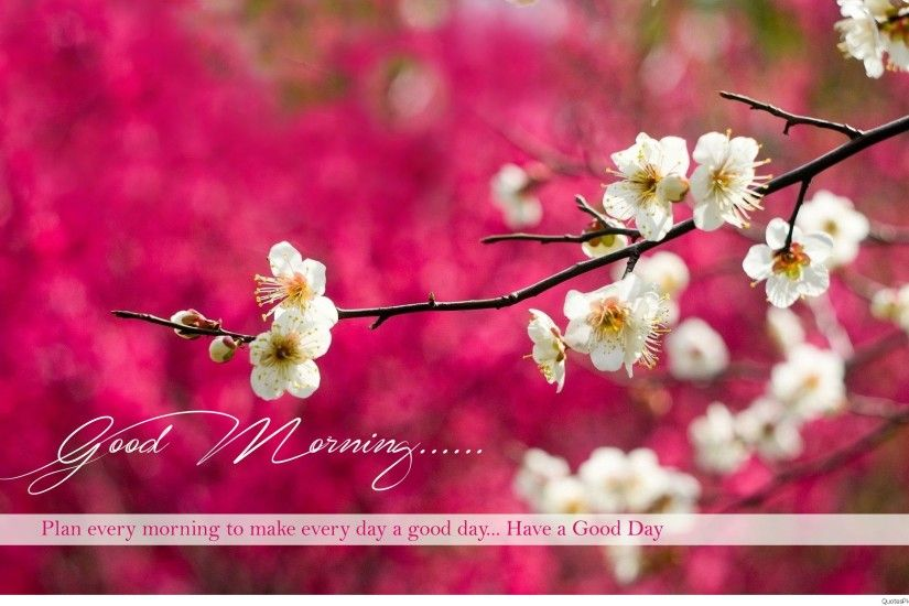 beautiful-good-morning-wishes-wide-hd-wallpapers
