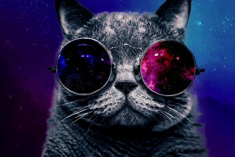 Funny Cat With Big Glasses FullHD Wallpaper