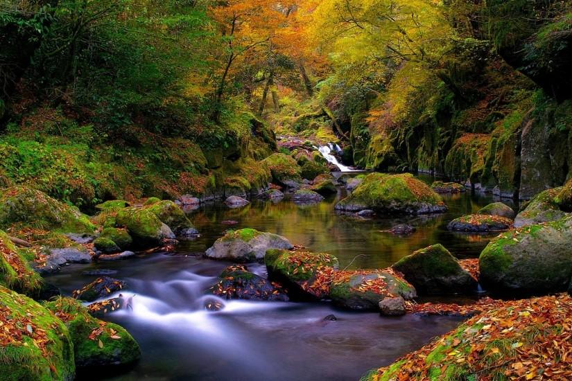 autumn landscape image for facebook - Google Search