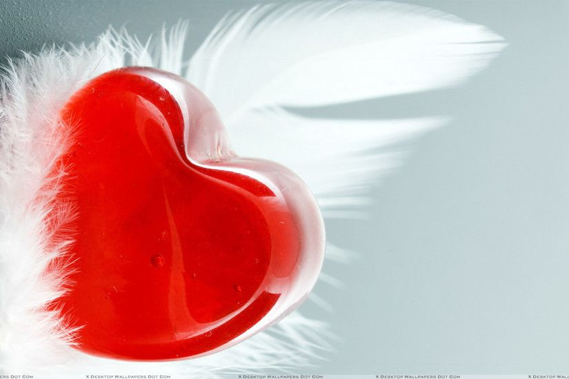 "You are viewing wallpaper titled ""Feather And Red Heart"" ..."