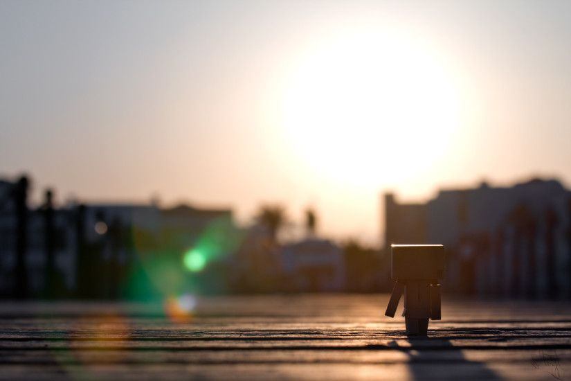 Misc - Danbo Bridge Egypt Sun Sunset Wallpaper