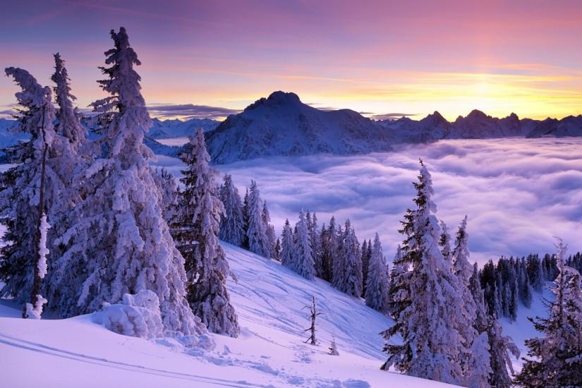free download winter desktop backgrounds 1920x1200 download free