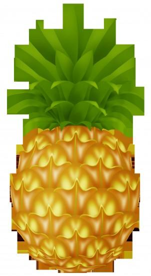 most popular pineapple background 1919x3495 for iphone 5