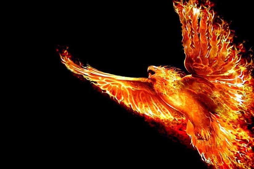 wallpaper.wiki-HD-Phoenix-Bird-Wallpapers-PIC-WPD001324