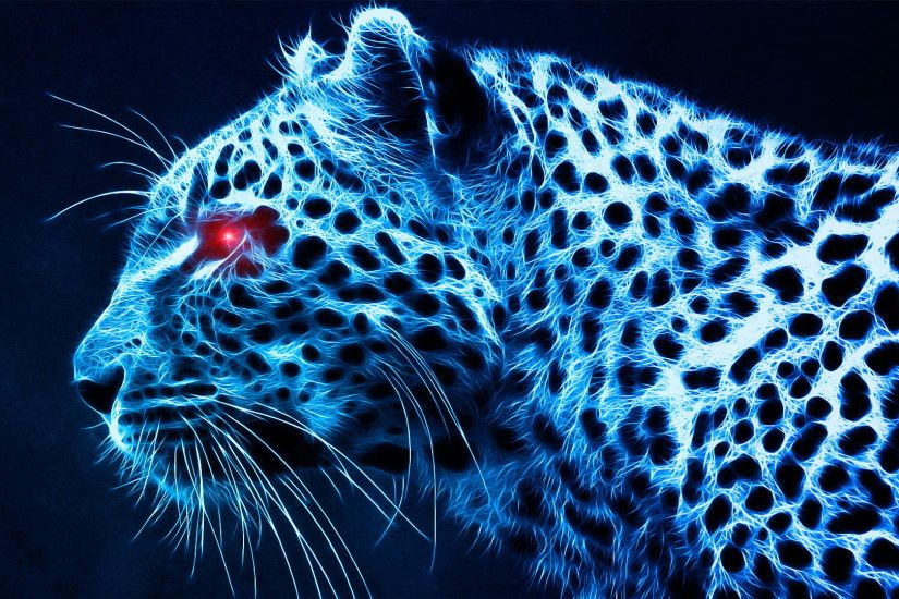 photos download leopard wallpapers hd desktop wallpapers high definition  monitor download free amazing background photos artwork 1920×1080 Wallpaper  HD