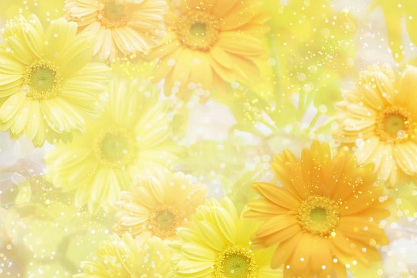 new flowers background 1920x1200