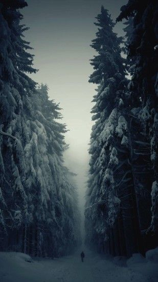 Snow Forest Lonely Walk iPhone 6 Plus HD Wallpaper ...