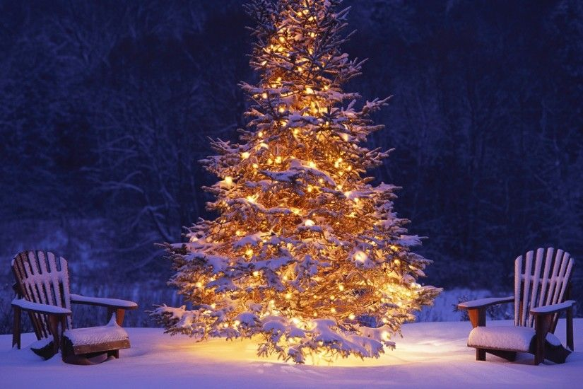 Net 48 HD Free Christmas Wallpapers For Download ...