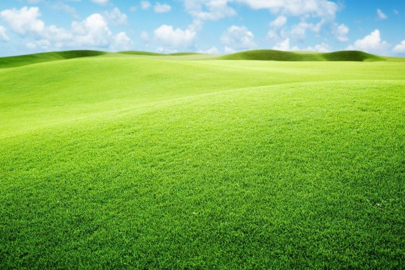 Green Landscape Wallpaper 12971