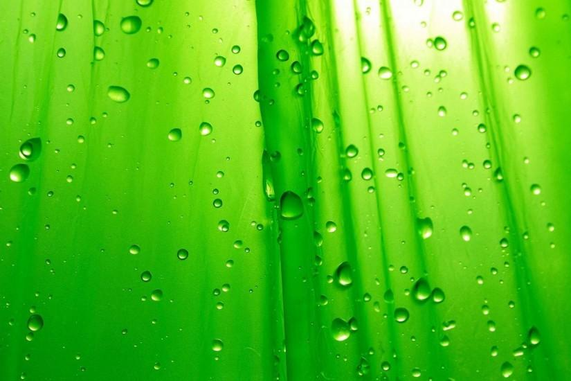 Image Green Background Free Download