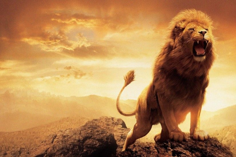 "1920x1200 Great Nature Wallpaper: Hd Desktop Wallpapers Lion Desktop  Background"">"