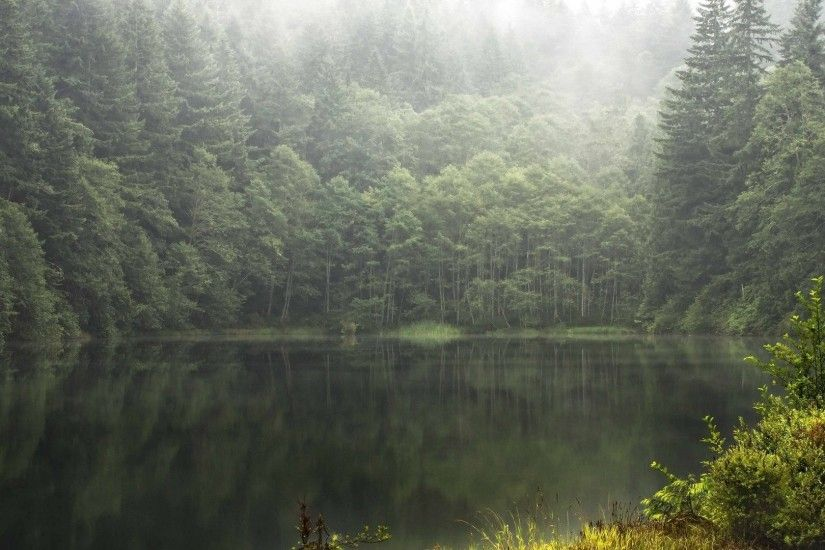 Beautiful Forest Lake HD Wide Wallpaper for Widescreen (27 Wallpapers) – HD  Wallpapers