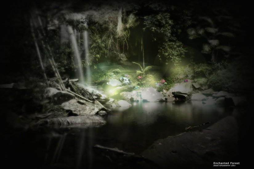 free download dark forest background 1920x1200 iphone
