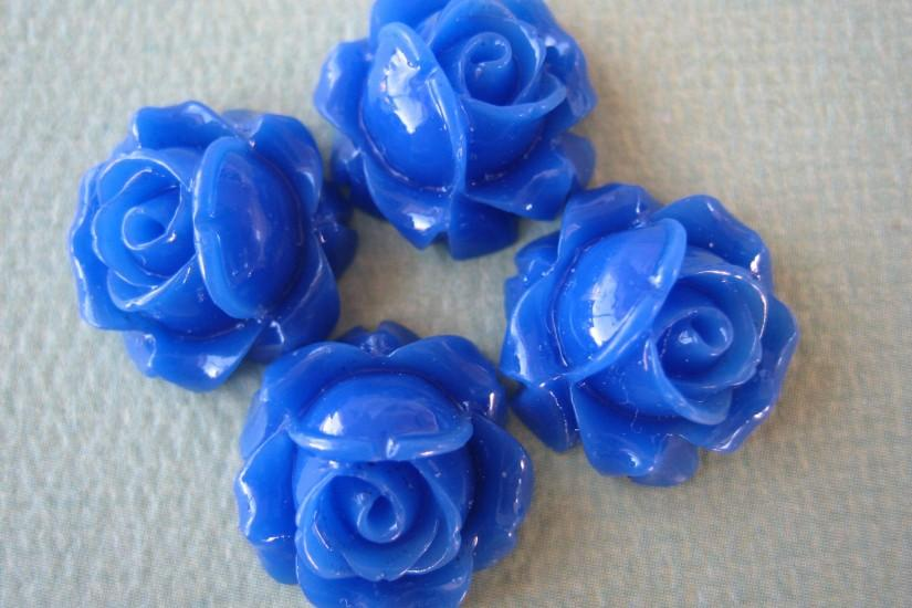 Displaying 11> Images For - Blue Flower Rose... Blue Flowers White  Background