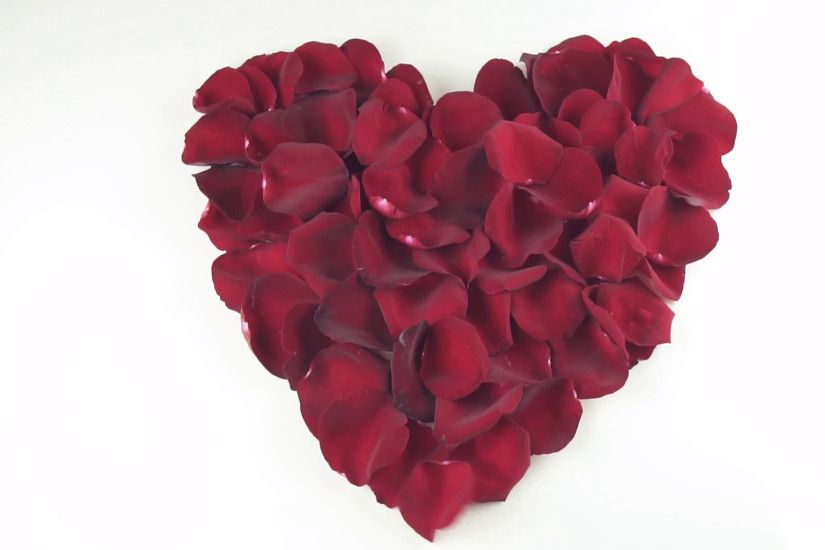 Heart shape of red rose petals blown off by the wind on white background  slow motion