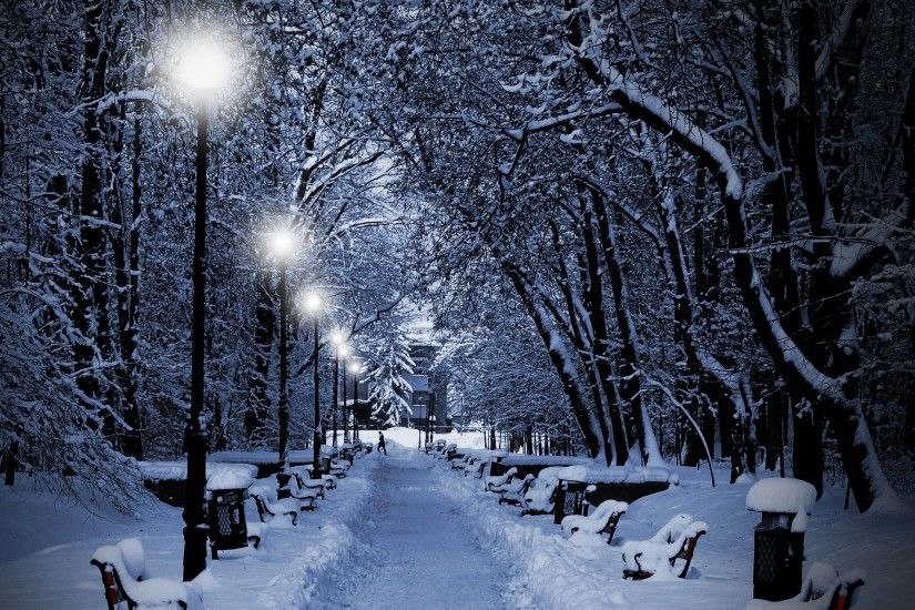 snowy park at night-winter natural landscape wallpaper Wallpapers View