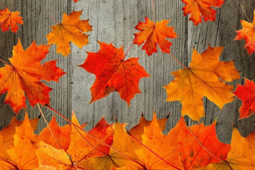 most popular fall wallpaper 1920x1080