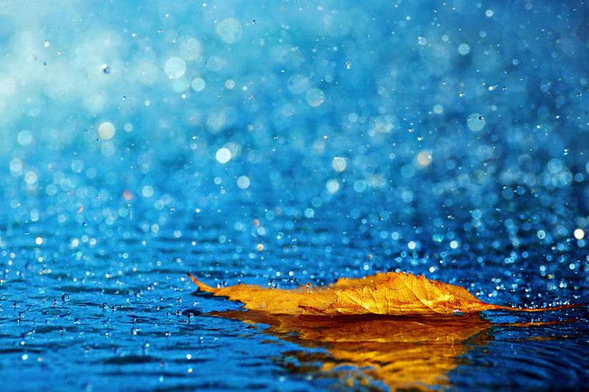 1920x1200 Beautiful Rain Falling Desktop Wallpapers HD Pictures