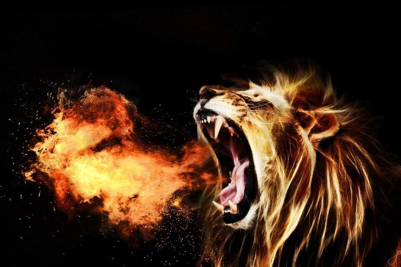 free lion background 1920x1080 for pc