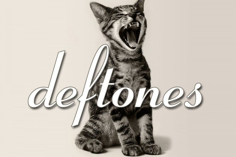 DEFTONES alternative metal experimental rock nu-metal heavy hard cat kitten  wallpaper | 1920x1440 | 549680 | WallpaperUP