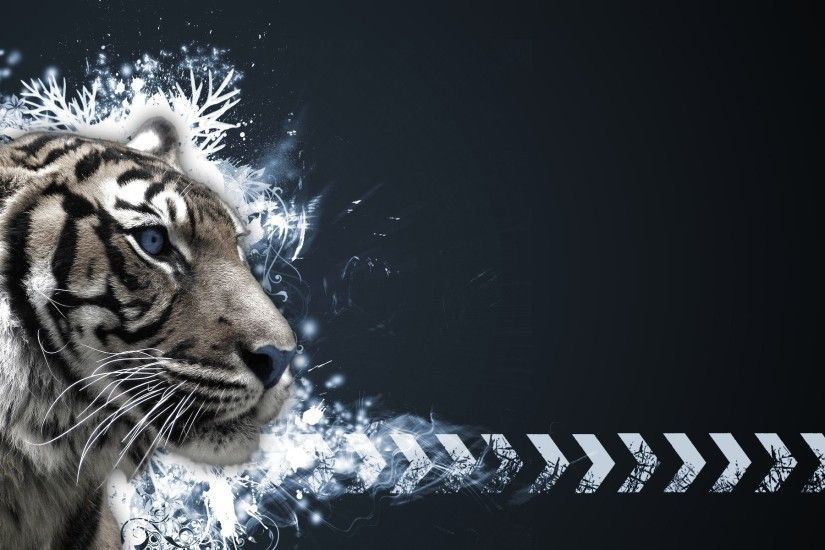 White Tigers Wallpapers (42 Wallpapers)