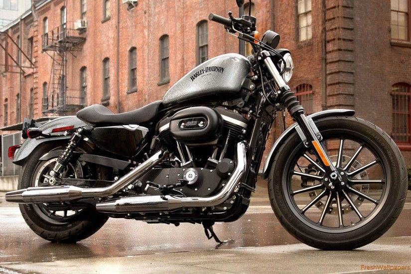 2015-harley-davidson-iron-883 Wallpaper: 2560x1600