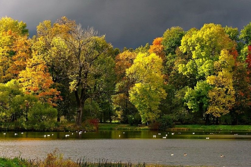 Preview wallpaper autumn, clouds, pond, seagulls, landscape 2560x1080