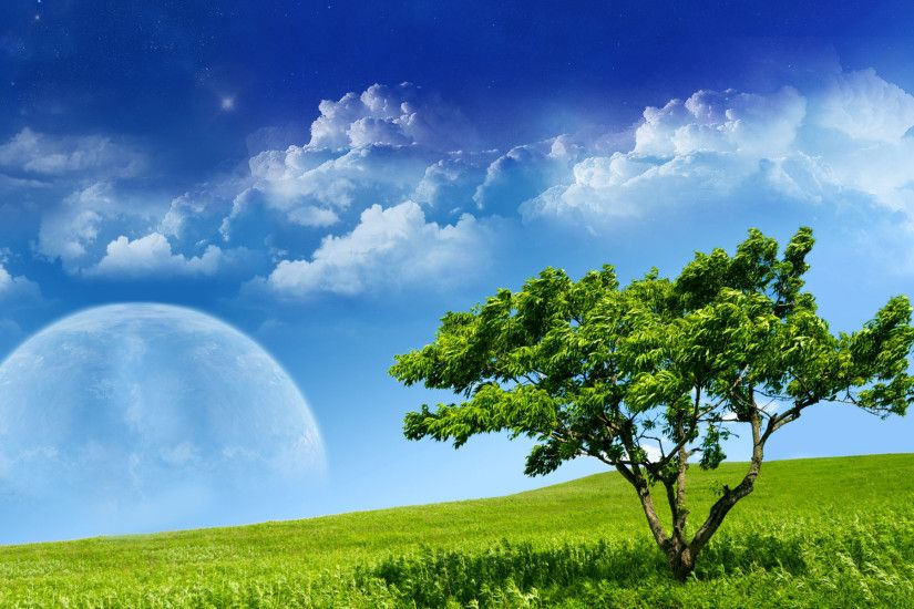 Beautiful Sky Moon in Spring HD Wallpaper | Nature Wallpapers