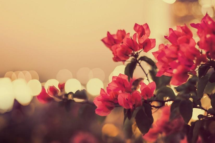 Free Vintage Flowers Wallpapers Download.