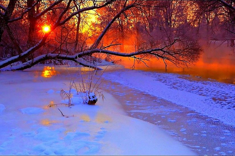 1920x1200 Wallpaper winter, sunset, evening, branches, tree, pond, cold,