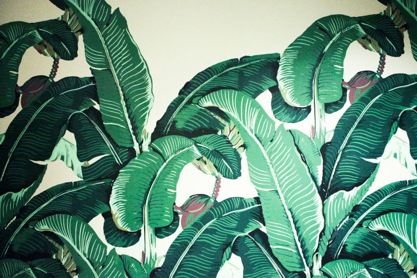 Beverly Hills Hotel Banana Leaf Desktop Wallpaper - Wallpapers Kid