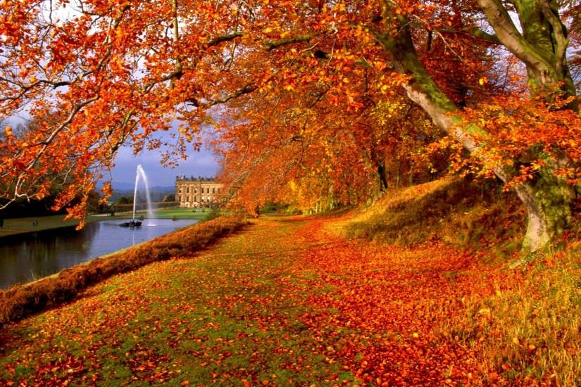 Free Autumn Backgrounds Wallpaper | Best Free Wallpaper