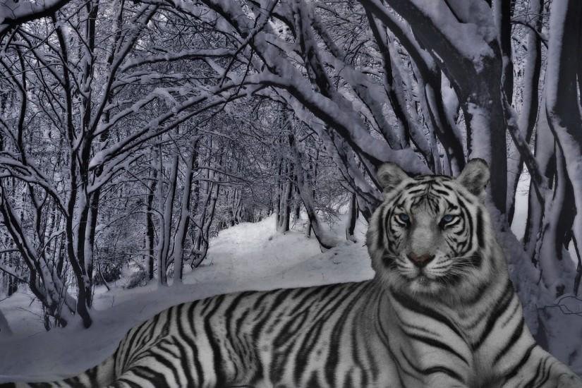 White Tiger Wallpaper Edit by RPG247