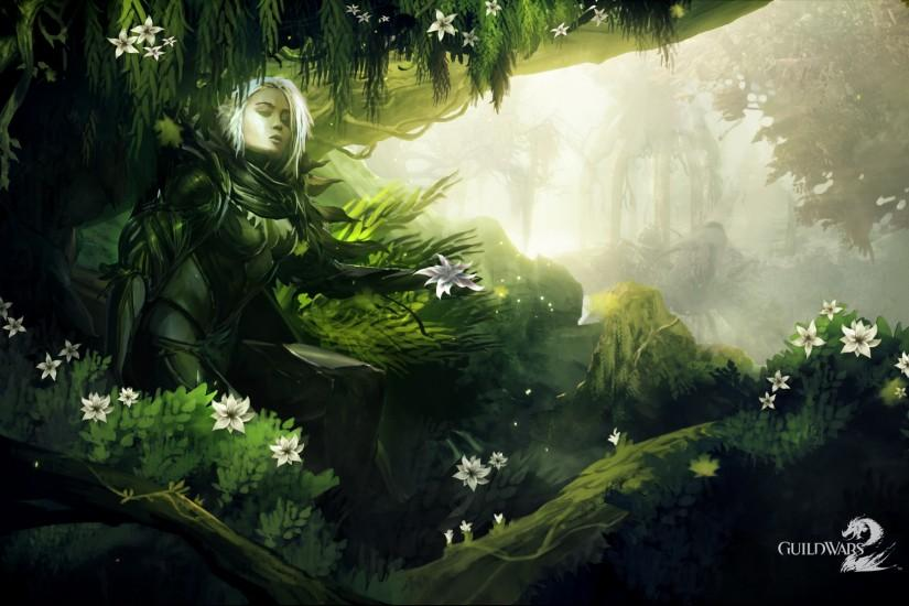 Guild Wars 2 HD Official Wallpapers - MMORPG News - MMOsite.com