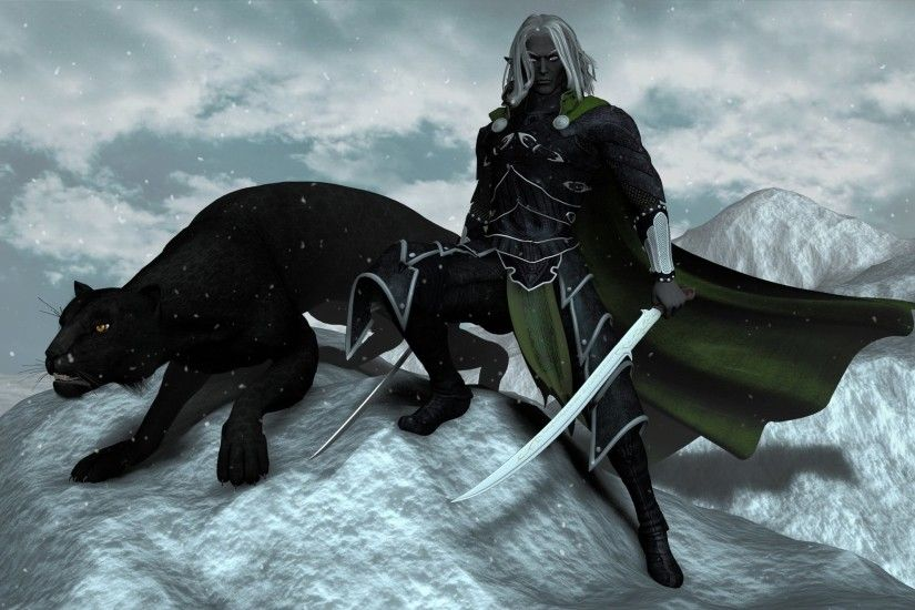 drizzt dourden and guenhwyvar wallpaper ...