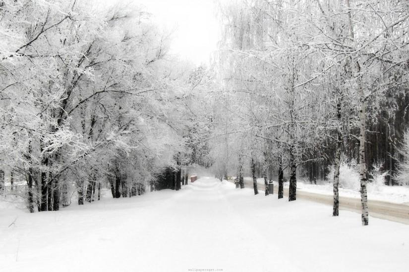 Winter Backgrounds Wallpaper 718796
