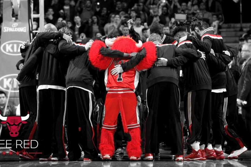 BULLS: Chicago Bulls Wallpaper & Screensaver