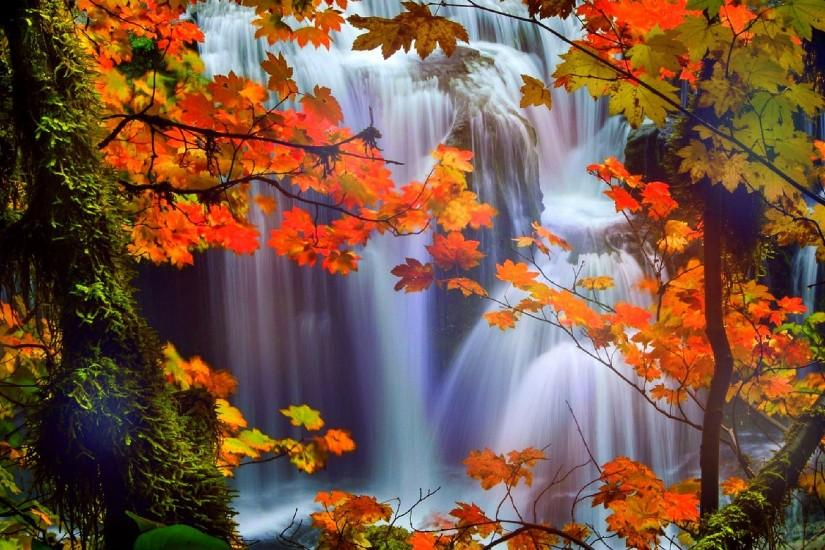 Image for Beautiful Waterfalls With Flowers Wallpaper Desktop Background  #89bw5